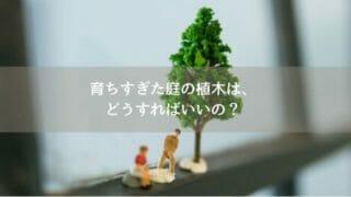 育ちすぎた庭の木に悩む家族